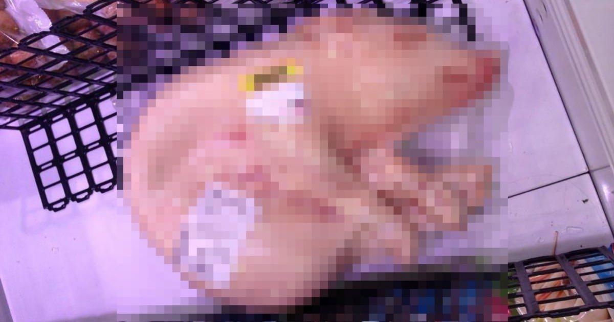 【閲覧注意】スーパーで子豚が姿形そのままで冷凍で売っていた衝撃の画像