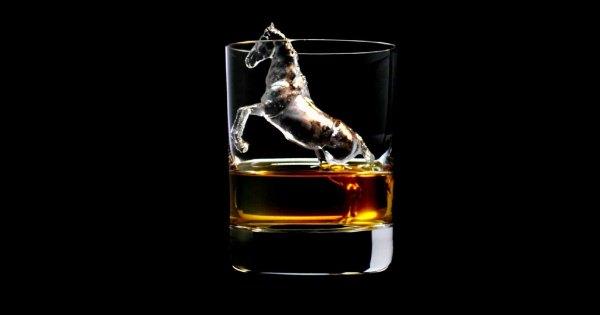 一度しか輝かないグラスに入った氷の彫刻。見ているだけで大人の味が喉を通りそうだ
