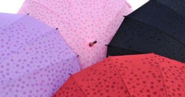 梅雨に負けるな!嫌な気分を忘れてしまうようなオモシロ傘14選