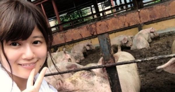太田プロを辞めて「今はブタに専念したい」と養豚場で働いている小林礼奈さんのブログが面白い!!