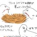 【深イイ】子が親元を離れて巣立ちの瞬間が泣ける【鷲】