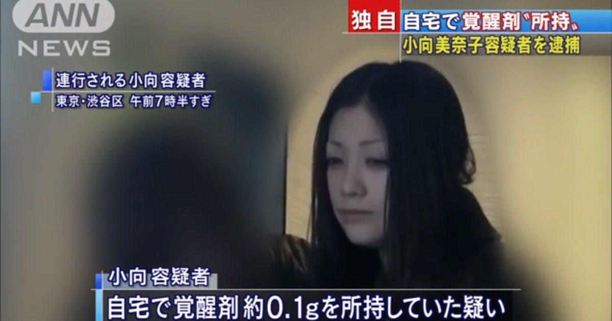 タレントの小向美奈子容疑者を逮捕 覚せい剤所持の疑い これで3回目となる