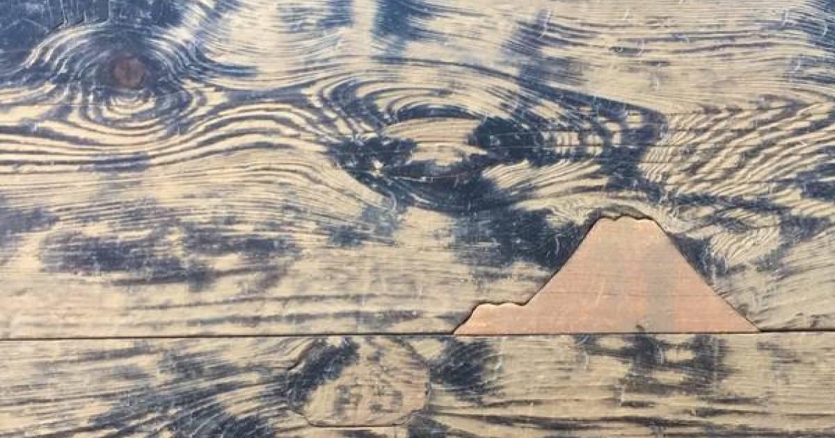 西本願寺で亀裂や穴を補強する為の「埋め木」が粋。ところで本願寺派は戦国時代ではどんな集団だった?