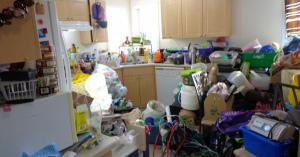 汚い部屋で発生しやすい害虫 気持ち悪い虫をわかせるのは止めよう