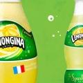 「レモンジーナ」は本当に土の味がするの?ネットでがっつり調べてみた。 まとめ