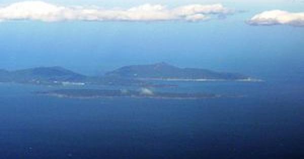 石巻沖の人気観光猫島網地島