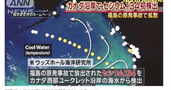 <日々悪化の現実・・・> 【福島原発事故】取り返しがつかない汚染が世界的に広がっている