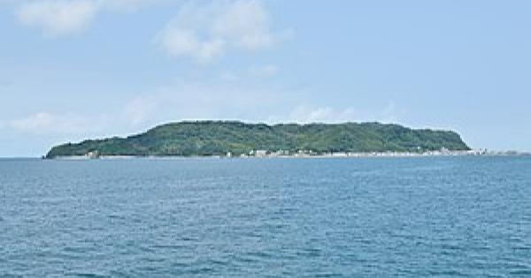 福岡県の人気猫島志賀島