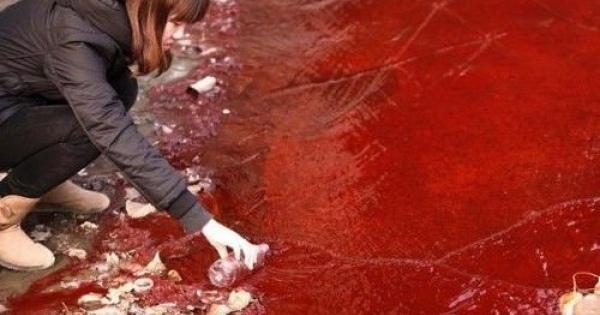 <写真で示す中国の実態・・・言葉が詰まった!> 外国人「もはや中国は手の負えない状況になっている…」環境汚染の写真にショックを受ける