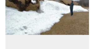 なんだか~変だなぁ・・・!  高さ3メートル、謎の隆起 北海道の牧草地 北海道新聞 4月21日(木)7時30分配信