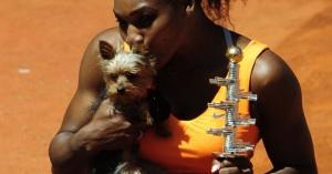 食欲ありすぎ?愛犬のドッグフードを食べて気分が悪くなった女子テニス1位のセリーナ・ウィリアムズ