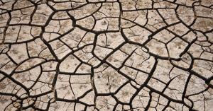 冬が来る前の乾燥肌対策