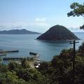 香川県の猫の楽園☆人気の猫島佐柳島(さなぎしま)
