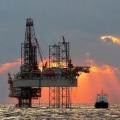 ご存知でしたか・・・? 人間の身体は石油でできてないのに、飲むもの食べるもの着るもの住むところ・・・石油に塗れきっている~!