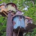 面白くて楽しい「ツリーハウス」住んでみたいのはどの家?