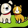 地震などの災害時、犬や猫などペットを連れて非難するため、対策を考えよう