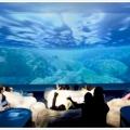 無料で遊べる「東京都 水の科学館」シアターは寝そべるソファでゆっくり鑑賞!