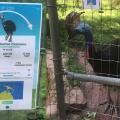 [ポケモンGO]影響されすぎ! 米バーミンガム動物園の動物紹介