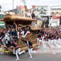 過去にも死亡事故も!日本一危険な祭り!?/だんじり祭り