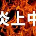 【炎上】藤原紀香をネガティブに取り上げると視聴率が上がり、ネット民が盛り上がり、そして炎上する