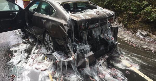 3400kgのヌタウナギを積んだトラックが事故、ローションまみれになる現場は米オレゴン州の高速道路