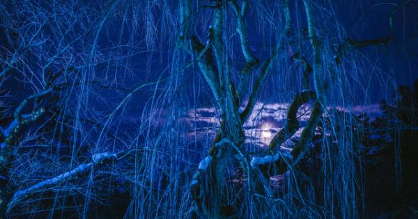 【閲覧注意】ヤビツ峠・広瀬団地・多良崎城跡【怖い話】