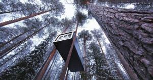 あまりにもユニークなスウェーデンのツリーハウスホテル!楽しすぎる!