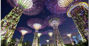 テーマパークのようなシンガポールの巨大植物園「ガーデンズ・バイ・ザ・ベイ」