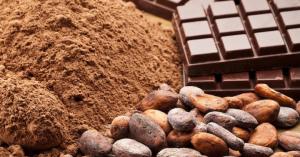 チョコレートやココアは、ヒトの認知機能を保護し、様々な認知機能の低下を抑える栄養補助食品になりうる