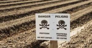 日本の食が危ない!主要農作物種子法廃止による、モンサントと遺伝子組み換え作物の脅威