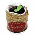 巾着袋をあけたらそのまま野菜を育てられる『野菜カプセル』が発売!