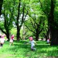 【2017年 埼玉県】家族で楽しく遊べる!おすすめの公園