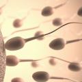 やはり豆乳は精子が減るとロマリンダ大学で発表!!性欲減退効果ありか?