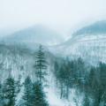 おすすめの洒落怖「初雪の山」