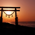 初詣は神社・寺院?神様仏様への願い事は叶う?正しい参拝で気持ちを一新!