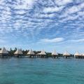 天国に1番近い島ニューカレドニアに行ってみたい!
