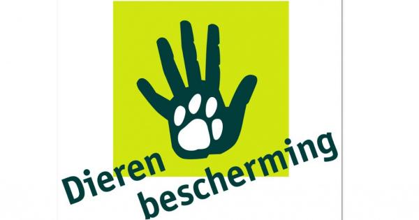【現地取材ルポ】オランダ『動物保護』活動に日本は学ぶべきではないだろうか? Vol.2 #ディ―レン・ブスケルミング #動物虐待 #Dierenbescherming