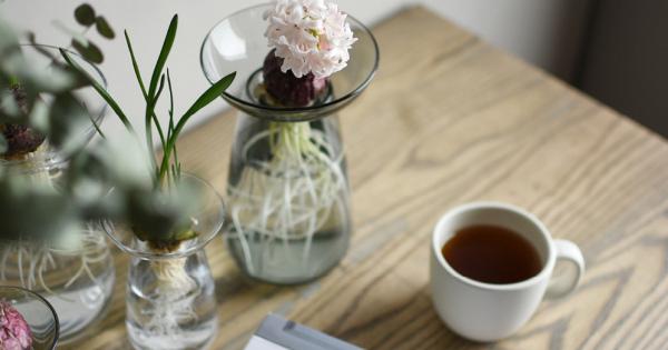 調子こいてもいいんだ!◇ スリーブランドのグラスとティードリッパーで紅茶を楽しむ午後。