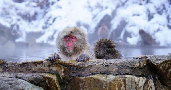 日頃の疲れを温泉で癒してストレス解消!千葉県の日帰り温泉おすすめ7選!