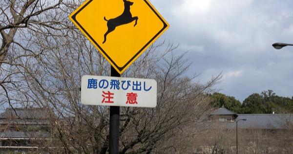 こんな標識見たことない!?珍しい日本の道路標識の数々