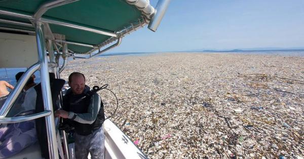 プラスチックゴミで埋まる海流の中の島々、脅かされる海洋生物