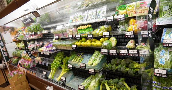 【悲報】衝撃!!不作のせいで野菜が驚くほど高騰