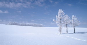 【絶景紀行】日本最北の美しき「北海道」画像&動画集 #Hokkaido #Japan