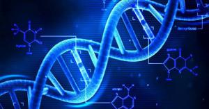 """生まれる前に将来の体型は決まっていた?""""倹約遺伝子""""とは?医大生が解説!"""