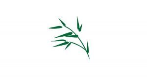 【雑学まとめ】竹は120年に一度だけ花を咲かせて、その後は枯れる