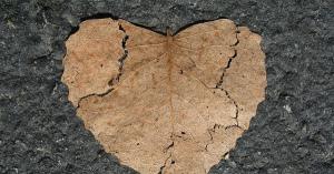 介護、ひきこもりからの悲しい事件…愛あるからこそ痛ましい