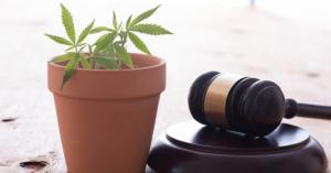 2018年、大麻(医療用・嗜好用)の合法化が世界中で進んでいるのはなぜ?
