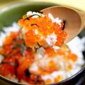 【オリジナルレシピ】シリーズ「いくら丼」! これぞ忘れられない北海道の味 #グルメ #海鮮
