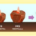 メタ坊必見!なめたらアカン【蒟蒻畑】11の効力!驚くで (ΦωΦ) フッ