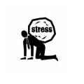 《薬膳》ストレス・イライラがたまったときに摂りたい食材